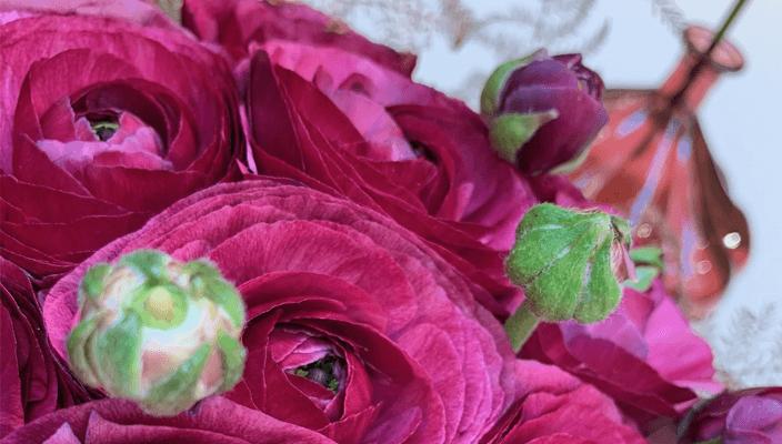 bordó esküvői virág